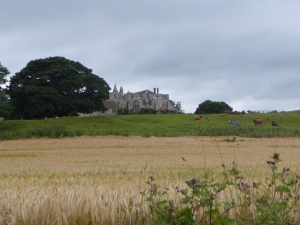 We saw Markenfield Hall nearby as we walked. The Jarrow marchers didn't.