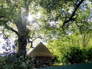 If you wanted an afternoon alone with your thoughts, your sketchpad or your book, this thatched hermitage was just the place