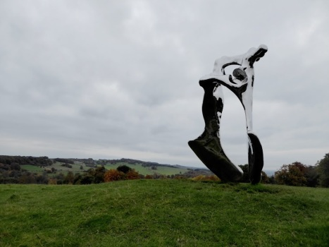 This is your introduction to YSP. 'Pelvis'