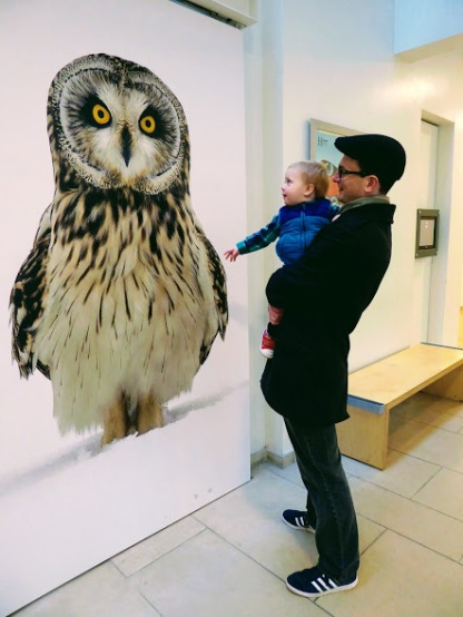 An owl takes centre stage at the European Wildlife Photographer of the Year Exhibition. William approves.