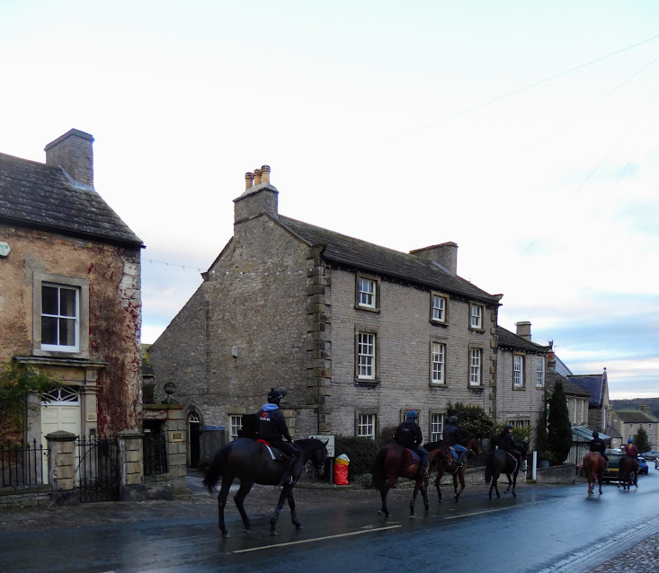 Horses in Middleham