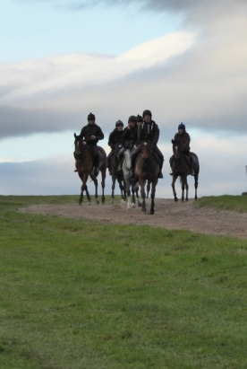 horses-on-the-gallops
