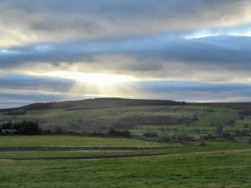 view-from-the-gallops