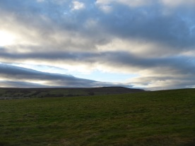 view2-from-the-gallops