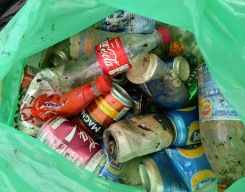 PlasticFreeRiponLitterPick29April2018 004