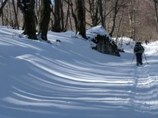 Snowy days near Montferrier.