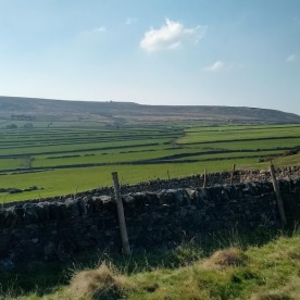 These drystone wall edged fields are reminiscent of the Yorkshire Dales.