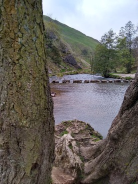 The stepping stones across the river in Dovedale.....