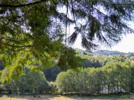 In Corrèze.