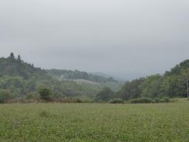 Near Corrèze.