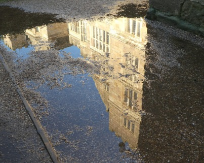 ..... in a puddle.