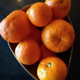 Foraged oranges.