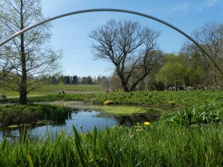 Ponds at Harlow Carr Gardens, Harrogate.