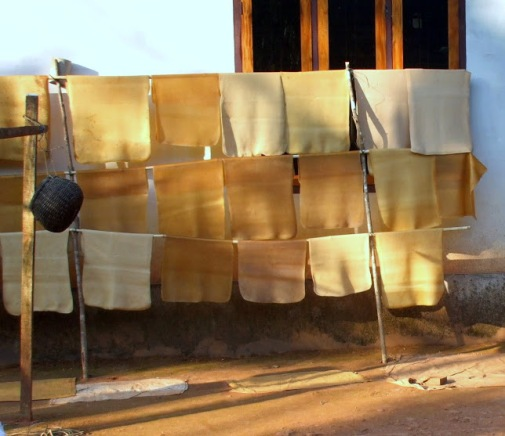 Latex sheets drying outside a cottage