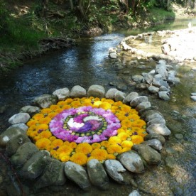 A flower garden in the river.