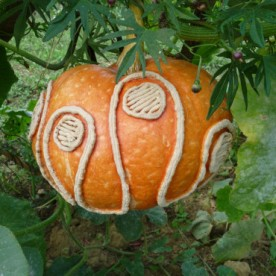 Etched gourd in the garden.