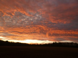 Sunday's sunset, North Stainley.