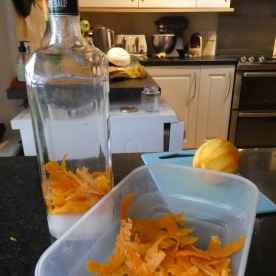 Stage Two: thinly peeled orange zest.