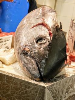 A tuna head.