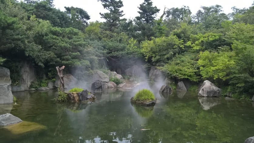 Well, this isn't a waterfall. But I couldn't resist this pond near the National Museum of Korea in Seoul, with its atmospheric clouds of vapour.