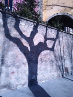My goodness, that was a gnarled tree that we spotted in Vic, Catalunya. But look what the shadow has done to it- flattened and smoothed it completely.