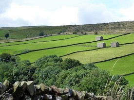 Coverdale in early summer.