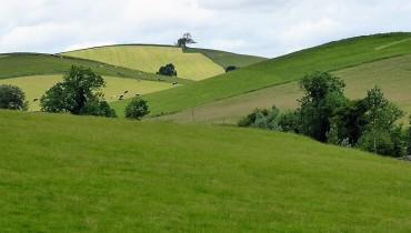 Drumlins near Gargrave, Airedale.